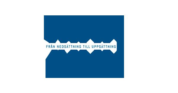 VIDD_logo2